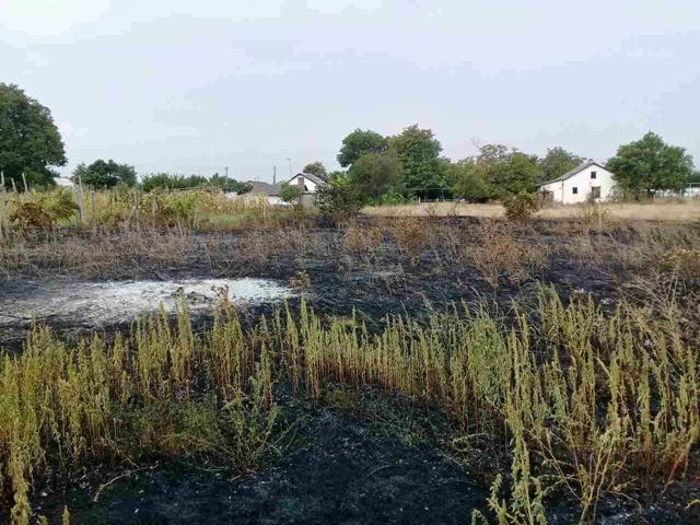 2800 кв.м. - общая площадь пожаров, вспыхнувших в Крыму в минувшие сутки